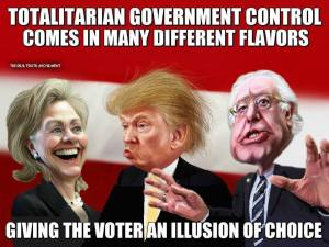 Voter and illusion of choice--Totalitarian control
