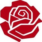 rose-new-symbol-of-socialism